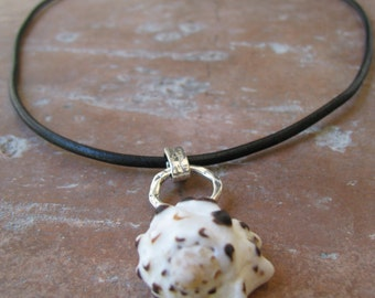 SALE!! Exotic Sea Shell Necklace Accented with Sterling Silver Rings and Strung on Black Greek Leather