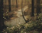 Forest Print (Human Nature)