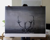 Antlers Poster