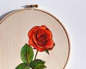 Original Framed Painting - Red Rose