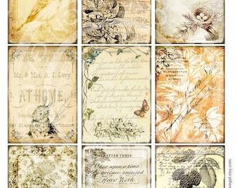 9 Vintage Bird Nest Bunny Rose Frame ledge Background Hanging party Postcard  Labels Digital Collage Sheet Images Sh105