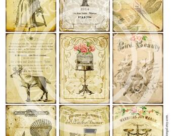 vintage victorian flower rose frames postcard ledge border. Black Bedroom Furniture Sets. Home Design Ideas