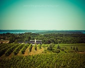 Vineyard Art print - Michigan Vineyard - Home Decor Wall art Vineyard - 5x7 print