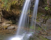 Grotto Falls in Great Smoky Mountain National Park, Tennessee - 11x14 inch Photographic Print by Brendan Reals