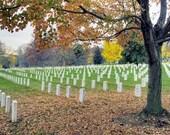 Arlington National Cemetery, Arlington, Virginia - 11x14 inch Photographic Print by Brendan Reals