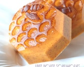 Bees for Beatrice Apricot Scented Honey and Goat Milk Soap with Apricot Seed Powder - Sale Benefits the SweetBea Fund