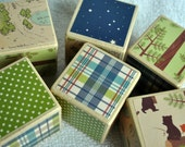 Reserved for Carly - Outdoor Adventures Patterned and Milk Painted Wooden Blocks (Set of Six)