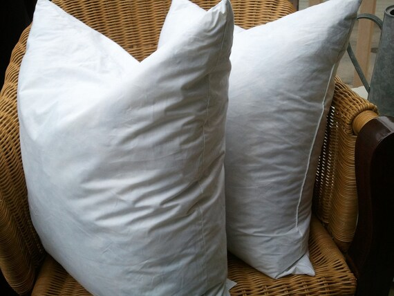 Feather Pillow Form 20x20 - SET of 4