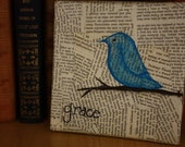 Grace Blue Bird 6x6