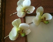 real touch ivory and light green cymbidium orchid hair clips