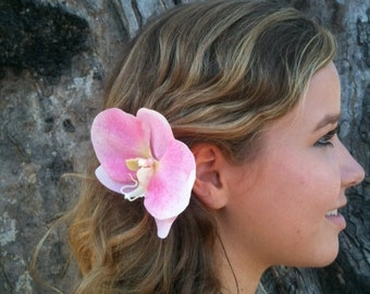 Pink Phalaenopisis orchid hair clip