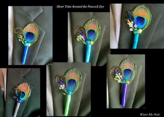 Peacock Boutonniere Package rewerved for Cathy