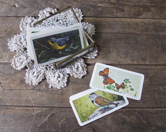 Vintage Bird and Butterfly Cards, Red Rose Tea Collectible, Paper Ephemera, Set of 12