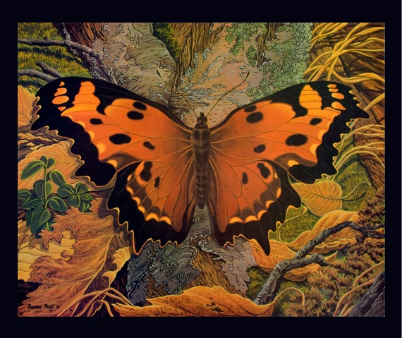 """SALE Butterfly Print of an Original Fine Art Painting Limited Edition Large Size 16"""" x 20"""""""