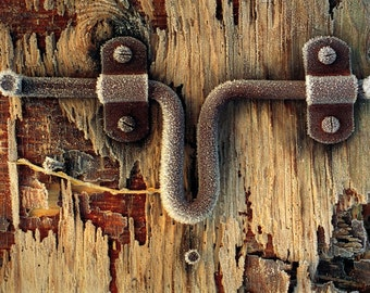 photograph Metallic Photographic Print -Frosty Latch- 8x10 Fine Art gifts for woman men man