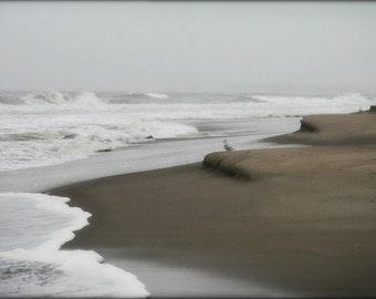 photograph Scarborough Beach in Driving Rain - Point Judith, Narragansett, Rhode Island, 10 photographic Metallic Print