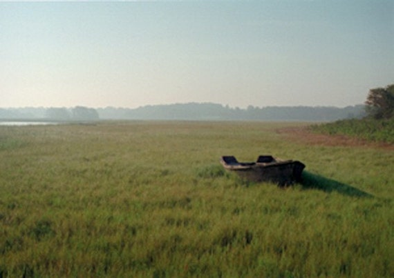 photograph Seapowet Marsh in Summer, Tiverton Rhode Island, 8x10 Photographic Print Fine Art gifts for woman men man