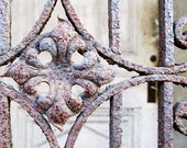 Vintage Look Photo Architectural Detail Rusted Gate in New Orleans, LA