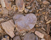 Nature Photography, Broken Heart Photograph, Natures Heart, 4 x 6 Photo, Heart Shaped Rock, Rustic Wall Art, Pebbles and Rocks