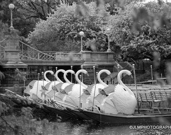Boston Swan Boats,Black and White Photograph, Boston Photography, Boston MA, New England Decor, Fine Art Print, Public Garden, Boston Art
