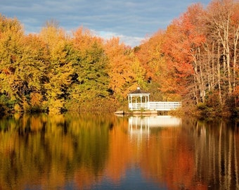 Fall Photography, New England Autumn, Fall Colors Reflected in Water, Golden Leaves, Fall Photo, Autumn Colors, Autumn Leaves, Fall Beauty