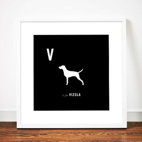 Vizsla print art illustration silhouette typographic typography alphabet
