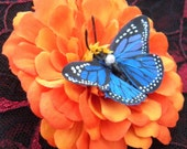 Orange Zinnia Zahara Butterfly hair flower (Ready to Ship)