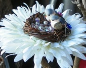 White spider daisy 'Lovebirds Nest' hair flower (Ready to Ship)