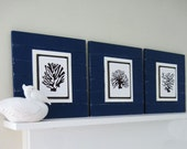 Set of 3 Navy Blue Plank Frames with Graphic Art Coral Sillhouettes for 8x10