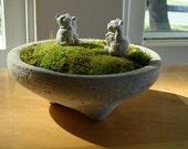 Zen Concrete Miniature Moss Terrarium & 2 Zen Mini Lucky Cats