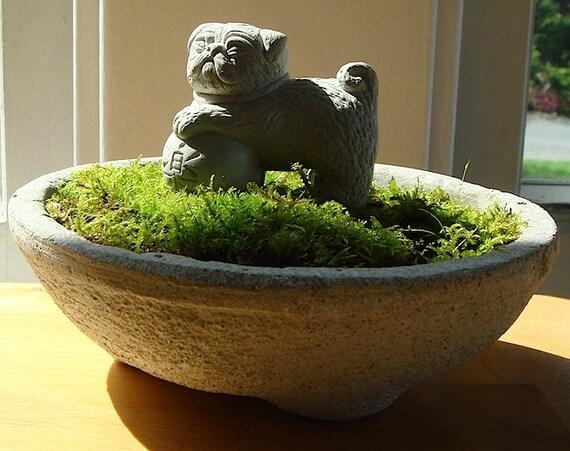 Zen Lucky PUG Foo Sculpture in Mini Moss Terrarium