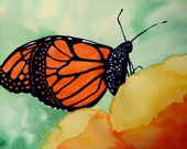 Monarch Butterfly - 9x12 inch Original Watercolor Painting