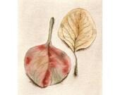Fallen Leaves 1 - Original Watercolor Painting - Fall Leaves - home decor rustic nature art