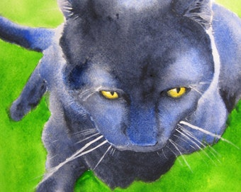 Sunning In The Grass - Black Cat - 8x10 inch Print of my Original Watercolor Painting
