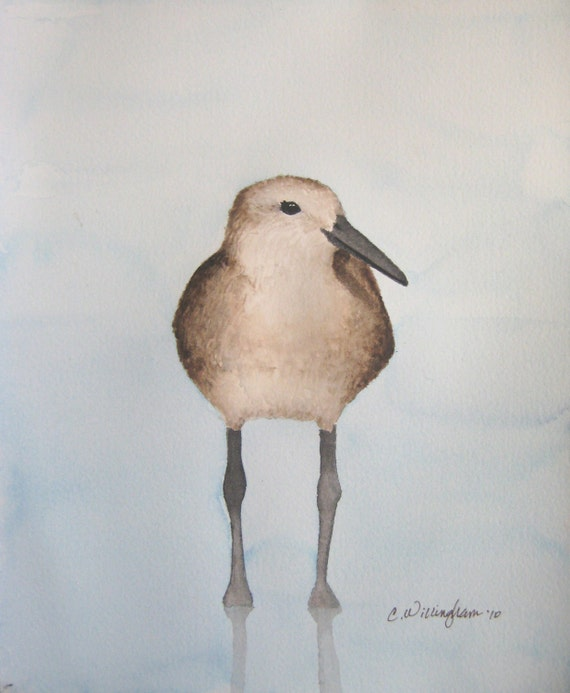 Watercolor Bird Art - Do These Feathers Make Me Look Fat  2  - Signed Fine Art Print - soft blue gray background, brown sea bird