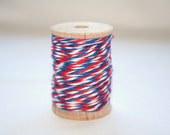 Bakers Twine AIRMAIL (10 Ply) 20 Yards