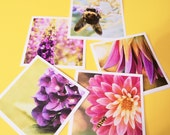 Handmade Set of Note Cards 5x5 (Floral)  Stationary Greeting Cards Fine Art Photography Prints by Shannon Leigh Studios
