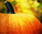 Pumpkin Bokeh - Harvest Time Fine Art Nature Photography Print (8x8) by Shannon Leigh Studios - shannonleighstudios