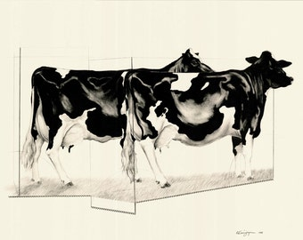 Cow Drawing / Black and White / Pair / Contemporary / Geometric / Offset Lithography limited edition print