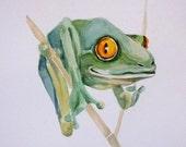TEAL FROG 8x10 original watercolor reproduction