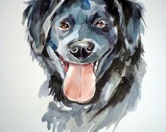 Custom portrait of your Pet 9.5 x 12.5 inch
