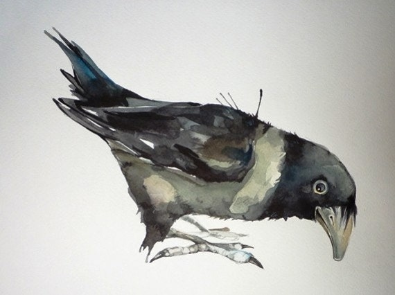 CROW TALK It is a miracle that curiosity survives formal education 11x9 inch ORIGINAL watercolor illustration