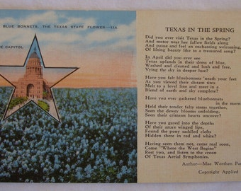 Texas in the Spring Vintage Postcard