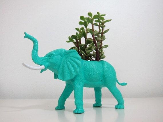 Elmer the Elephant Planter & Succulent