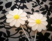 Reserved for Lindsey - Gerber Daisy Sugar Cookie Pops  - 2 dozen