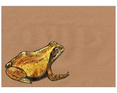 Frog A4 Signed Print