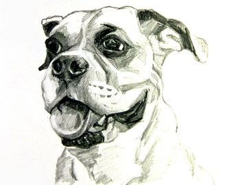 Custom Pet Portrait Graphite on Paper