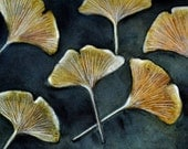 Ginkgo leaves-   8 x 10 in print of original watercolor painting