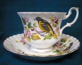 Royal Albert Cup and Saucer -  Birds, Flowers, Berries - Woodland Series