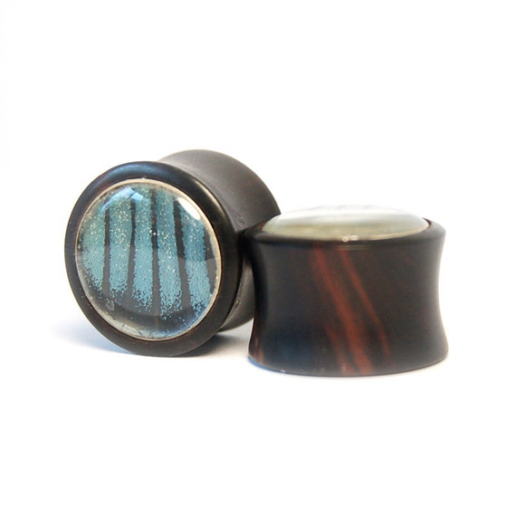 3/4 inch Butterfly Wing and Ebony Wood Plugs Pre-Made - SALE